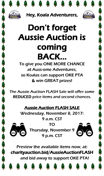 AussiePromoHalfSheet FLASH 11 08 17